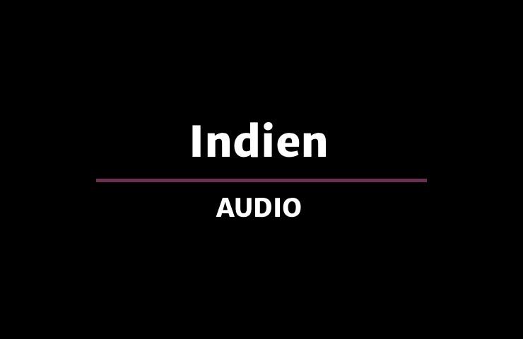 Hader & Dorfer lesen Indien